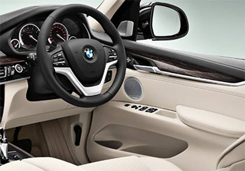 BMW X5 Steering Wheel Interior Picture