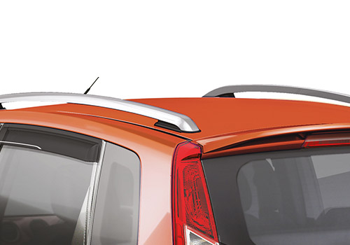 Ford Figo Roof Rail Interior Picture