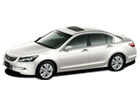 Honda Accord in White Color