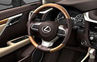 Lexus RX Steering Wheel Picture