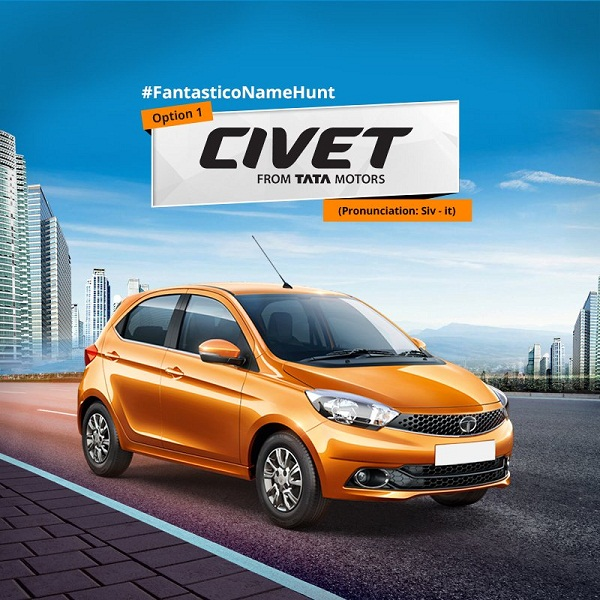 Tata Zica: Which name suits to it, Tiago or Adore or Civet